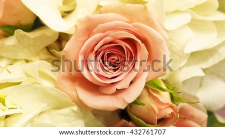 White rose bouquet - stock photo