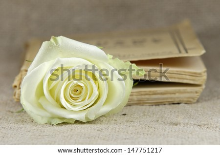 white rose in a closed book - stock photo