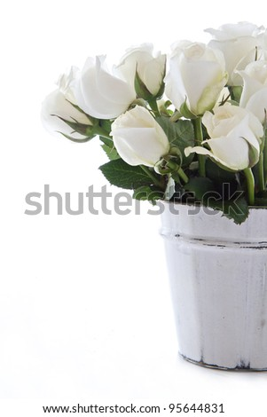 White roses in a wooden container and isolated on a white background - stock photo