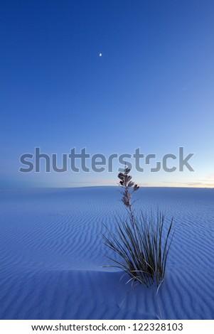 White Sands at Night - stock photo