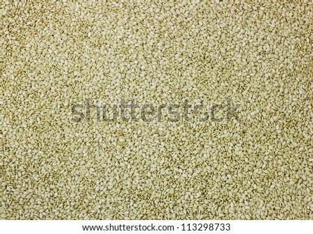white sesame seeds close up background, - stock photo