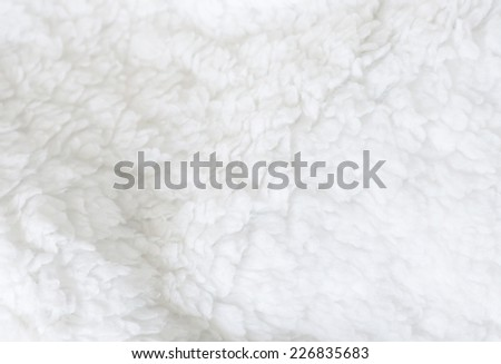 White sheep fur background texture wallpaper, natural ecological organic clean cover, copy space for text - stock photo