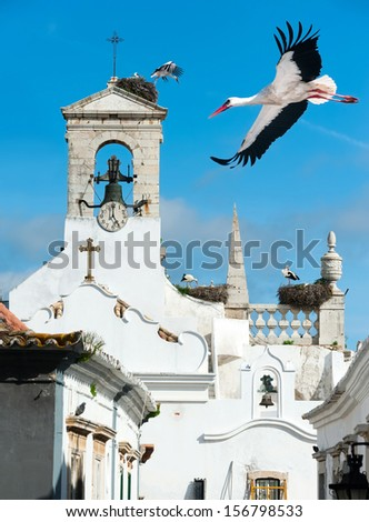 White storks on a local church in Faro, Portugal - stock photo