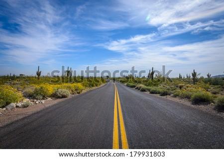 White Tank Mountain Park, Arizona - stock photo