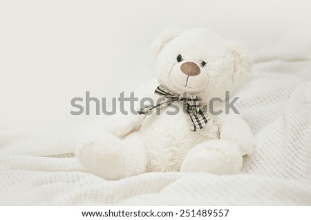White Teddy bear on a white veil - stock photo
