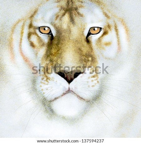 white tiger face - stock photo