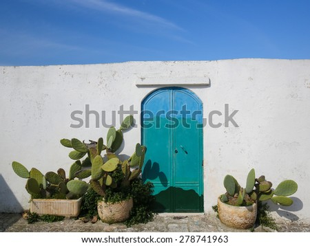 White wall, painted door and cactusses in the medieval town Ostuni in Puglia, South Italy. - stock photo