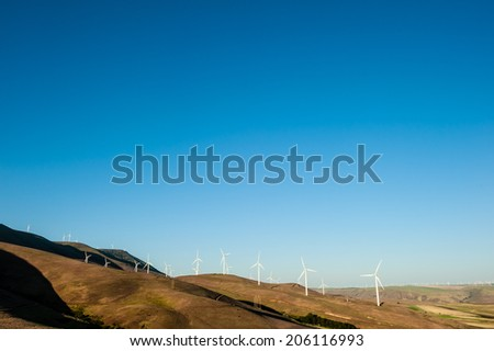 white windmills producing clean energy during a bright summer day helping fight against global warming - stock photo