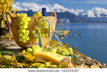 White wine and basket of grapes. Lavaux region, Switzerland - stock photo