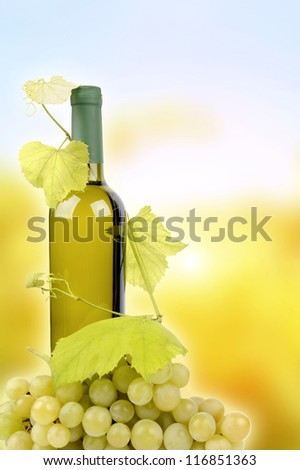 White wine bottle and grapes on background - stock photo
