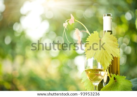 White wine bottle, grapevine and wineglass against green spring background - stock photo