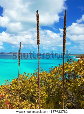 Whitsunday Island in Queensland Australia - stock photo