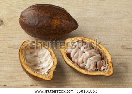 Whole and half fresh ripe cacao fruit and seeds - stock photo