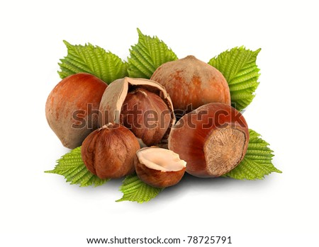 whole hazelnuts and nuts with the leaves on a white background - stock photo