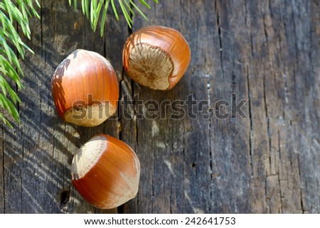 Whole Hazelnuts on old table - stock photo