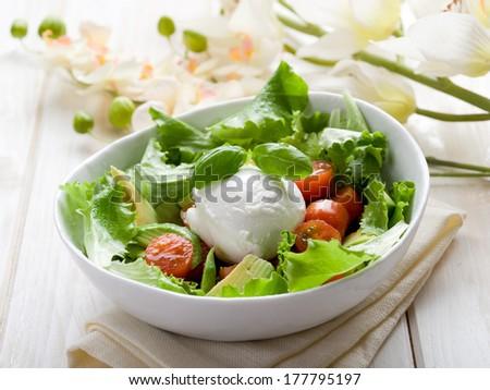 whole mozzarella with green salad,tomatoes and avocado - stock photo