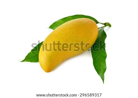 whole ripe mango with leaf on white background - stock photo