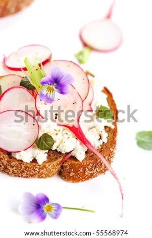Wholesome sandwich with cheese, garden radish - stock photo