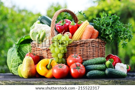Wicker basket with assorted raw organic vegetables in the garden. - stock photo