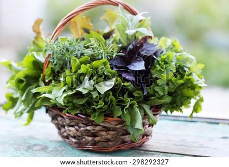 Wicker basket with fresh herbs - stock photo