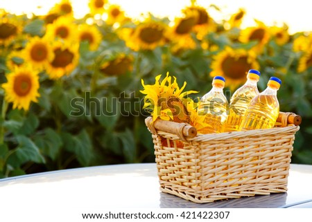 Wicker basket with sunflower and three bottles of oil on the background of the field - stock photo