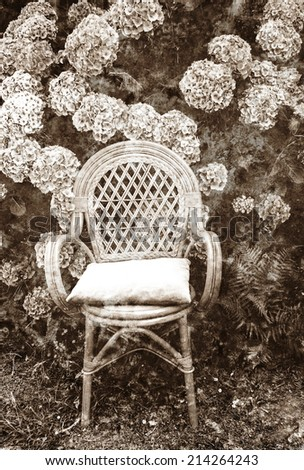 Wicker chair with faded velvet pillow and colorful hydrangea bushes in the garden. Brittany, France. Vacation at countryside background. Retro aged stained photo with scratches. Sepia. - stock photo