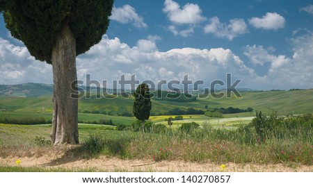 Wide-angle view on cypress trees in a cloud covered wide Tuscan landscape in spring - stock photo