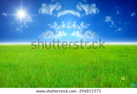 Wide image of green grass field and bright blue sky with sun.