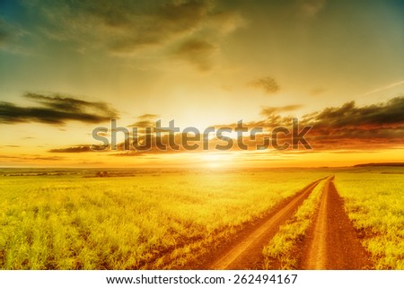 Wide meadow and rut beneath evening sky and sunset - stock photo