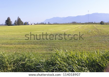 Wide open rural farm land found in Canada s Fraser Valley District/Wide Open Rural Land/Wide open rural farm land found in Canada s Fraser Valley District - stock photo