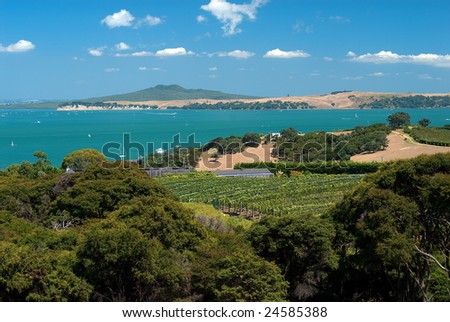 Wide summer shot of Auckland's Waiheke island with winery and grapevines in foreground, and the island volcano called Rangitoto in the distance - stock photo