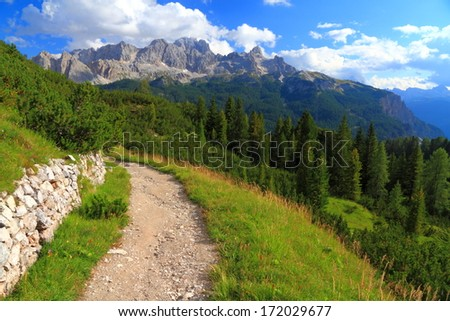 Wide trail on green meadow, Dolomite Alps, Italy - stock photo