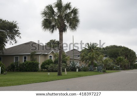 Wide view of Palm tree in large family home garden and street in a luxury rural area in Florida  - stock photo