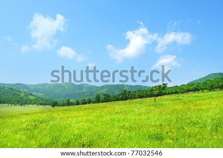 wideangle green meadow view with clouds from Hasan reserve - stock photo