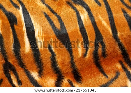 Wild African animal hide pattern tiger straps  - stock photo