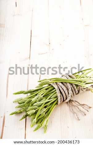 wild asparagus - stock photo