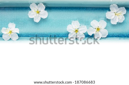 Wild cherry flowers in blue bowl with water, spa, isolated on white backgound - stock photo