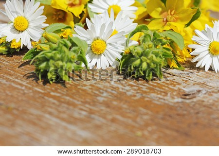 Wild flowers on old wooden table. Background for your text. - stock photo