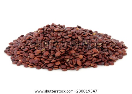 Wild jujube seed used in chinese herbal medicine over white background. Suan zao ren. - stock photo