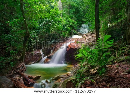 Wild jungle forest and scenery waterfall cascade with tropical plants. Nature background of Thailand evergreen national park - stock photo