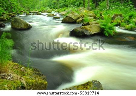 wild river - stock photo