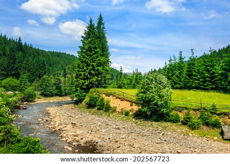 wild river flowing between green mountain forests on a clear summer day - stock photo
