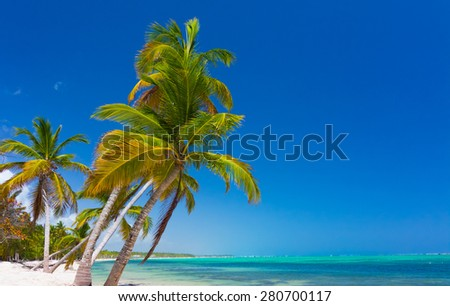 Wild scenery in tropical paradise - stock photo