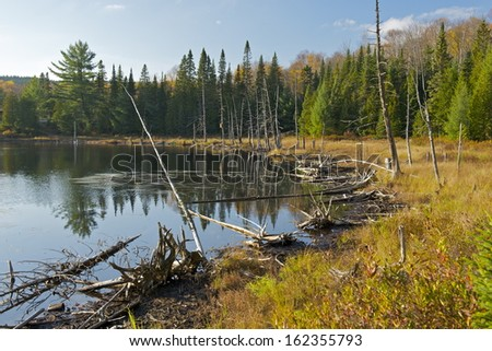 Wilderness in Mauricie National Park, Quebec, Canada - stock photo