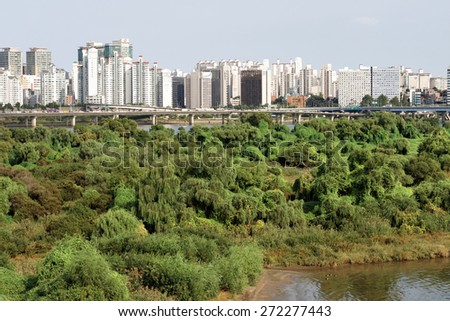 wilderness in the city - stock photo