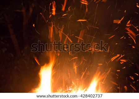 Wildfire,Arson or nature disaster,Forest fire,fire flames - stock photo