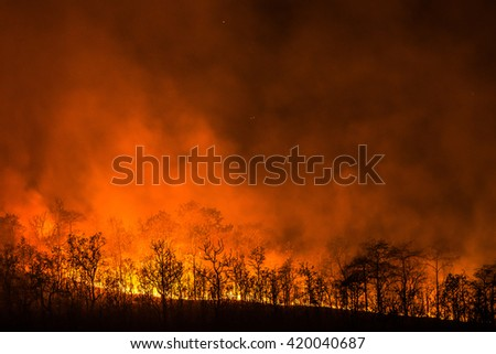 Wildfire line on hill at night. Forest Fire will destroy everything. - stock photo
