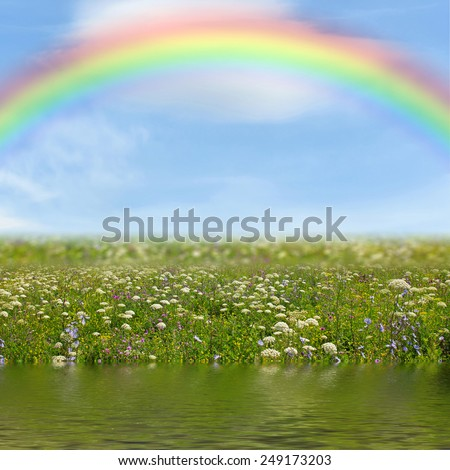 Wildflower meadow and rainbow reflected in the water - stock photo