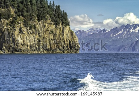 Wildlife Cruise around Resurrection Bay in Alaska - stock photo