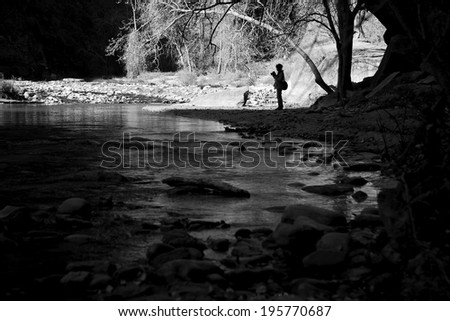 Wildlife photographer in her element, Zion National Park - stock photo